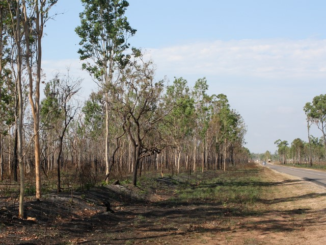 Hervey's Range Road