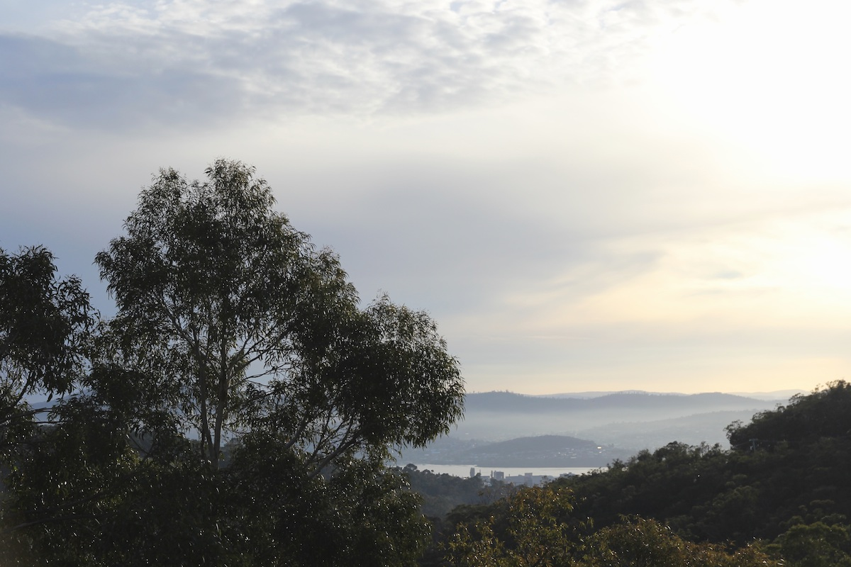 View of Hobart over the trees