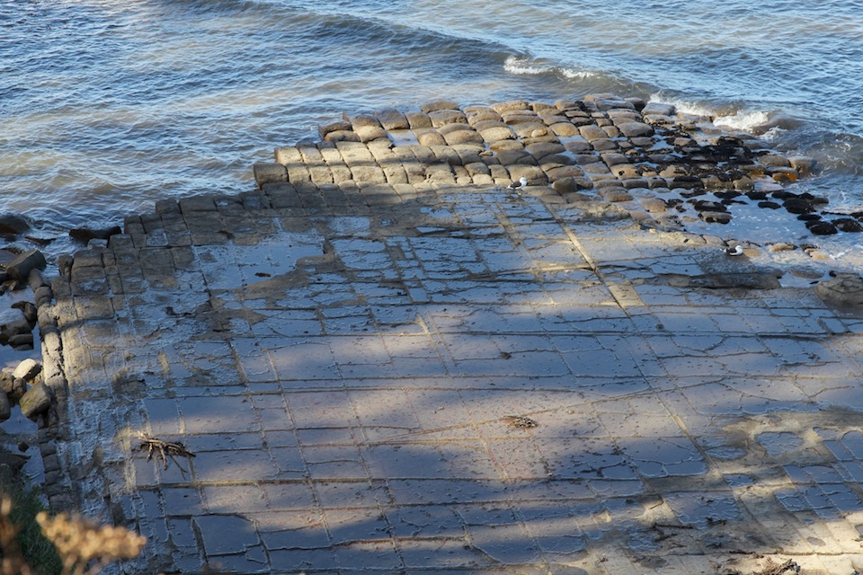 Tessellated Pavement showing structure