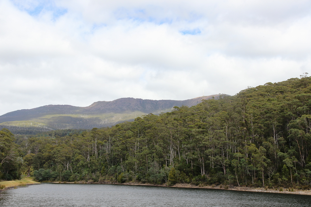 Waterworks reserve, looking over the upper dam towards Mount Wellington