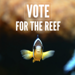 Vote for the Reef