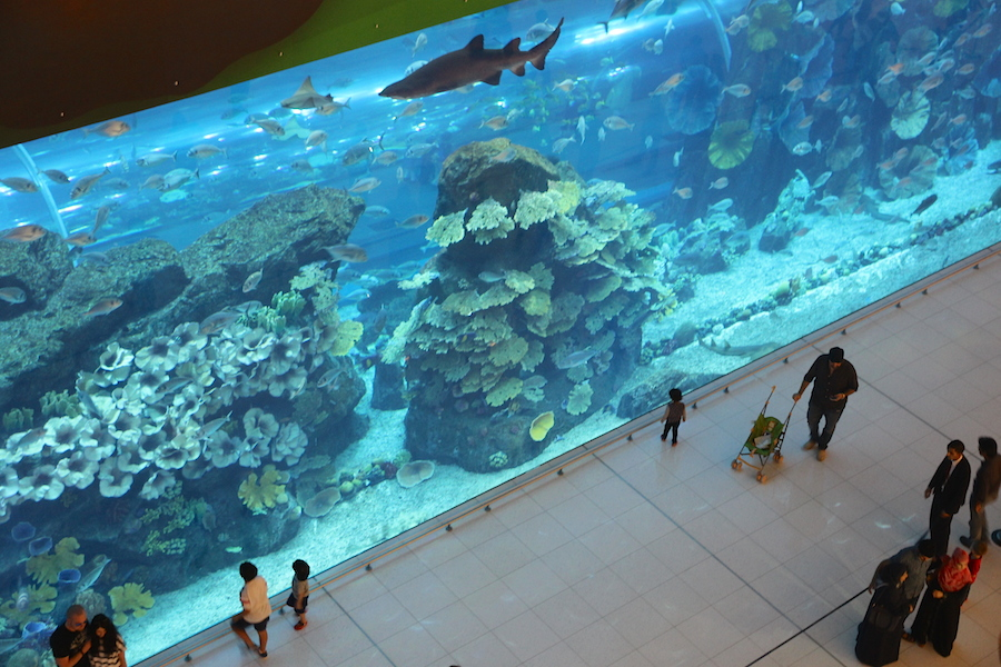 Shopping mall aquarium, Dubai