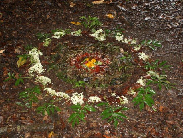 Leaf-litter mandala