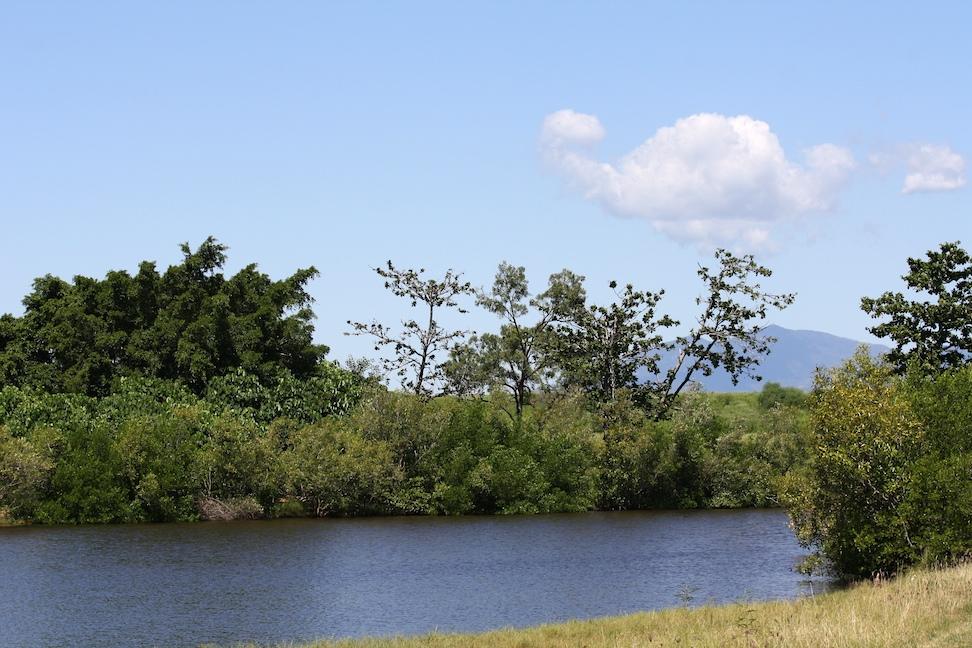 View of Ross Creek, Townsville