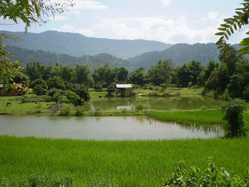 farm and ponds