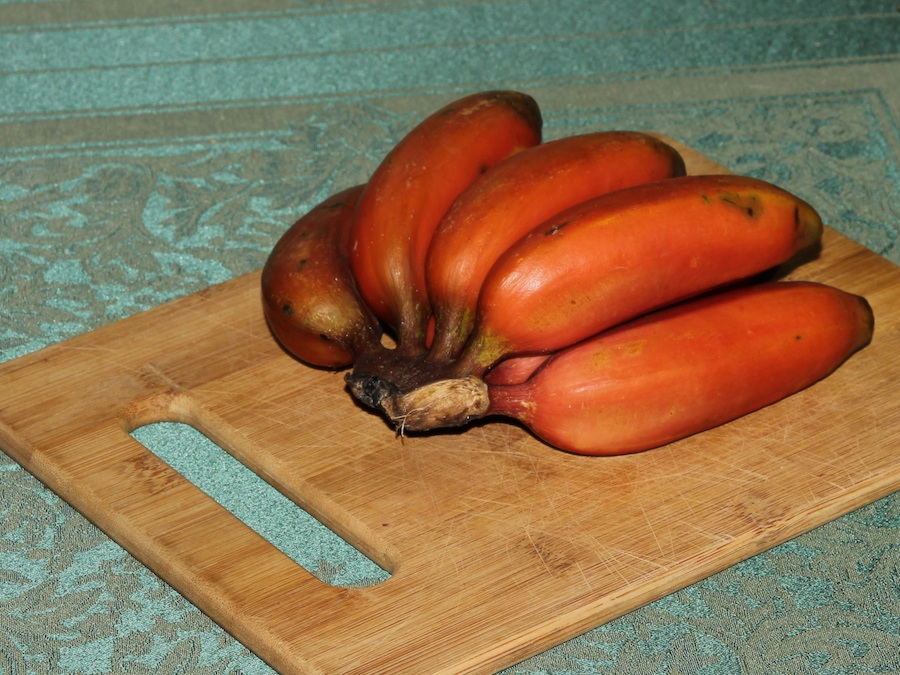 red bananas on cutting board