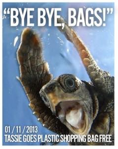 bye bye bags