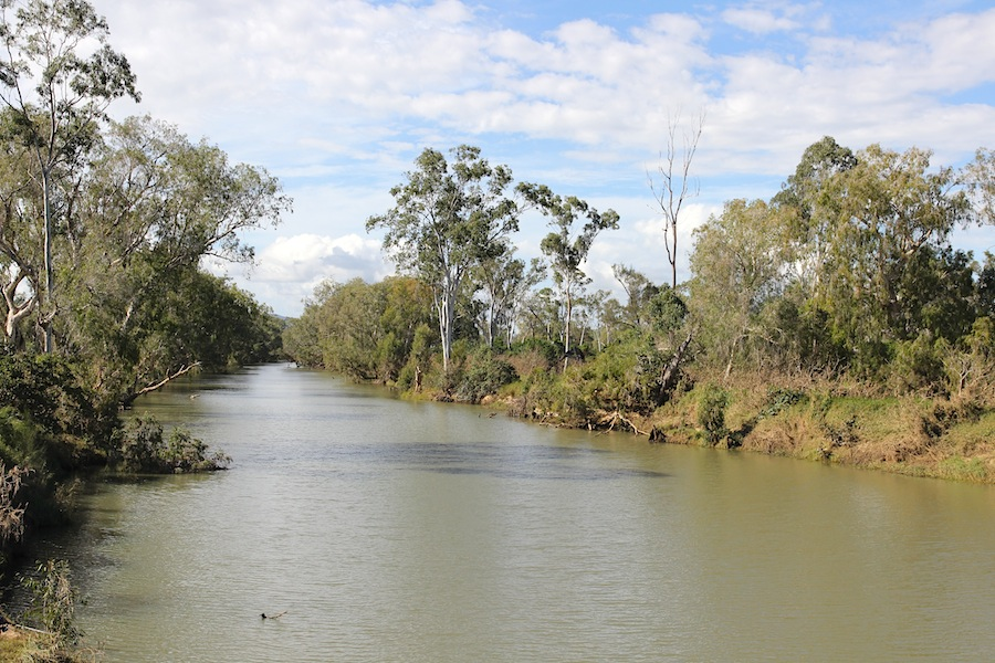 creek with trees on banks
