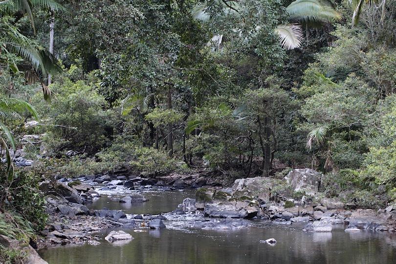 rocky pool in river