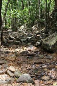 stony creek bed