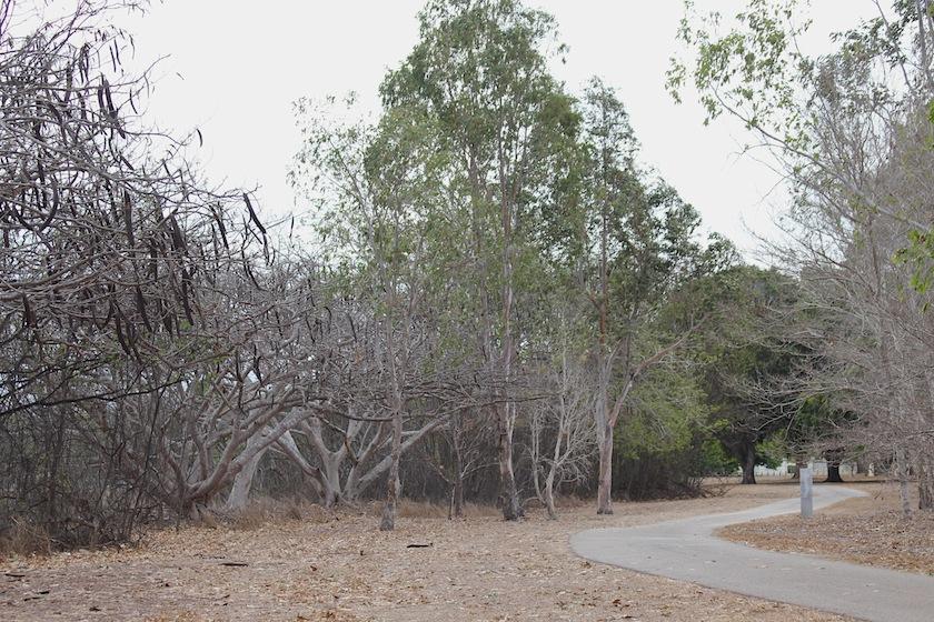 dry park