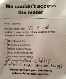 The meter-reader's excuse