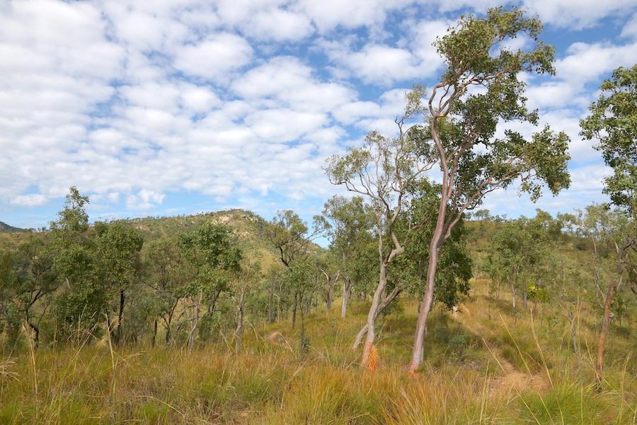 foothills of Mt Stuart