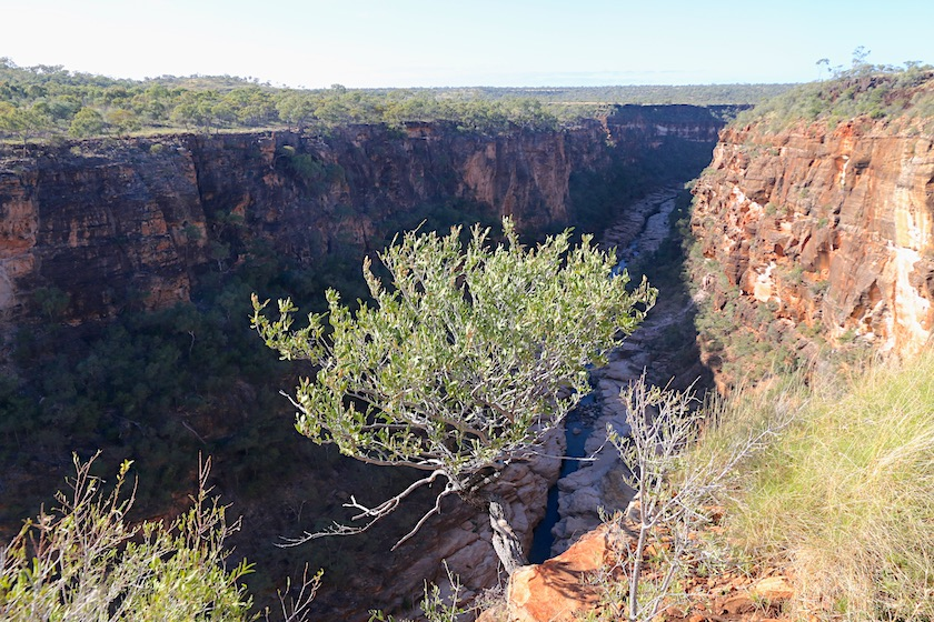 Porcupine Gorge from the Lookout