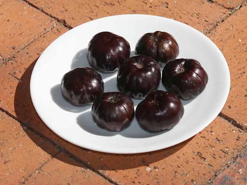 ripe burdekin plums