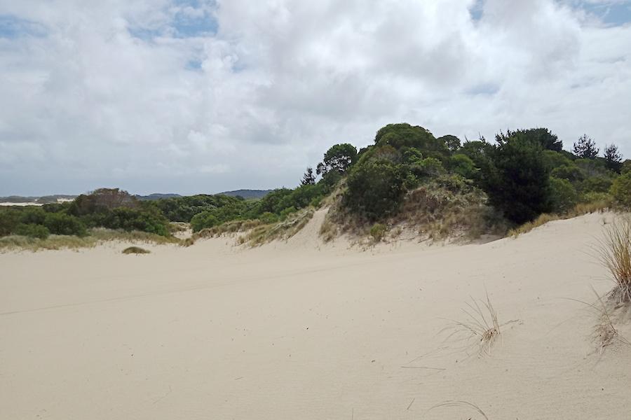 Henty Dunes