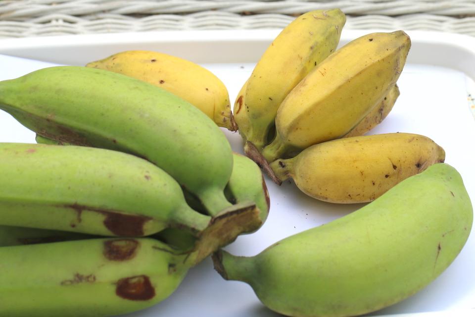large and small bananas