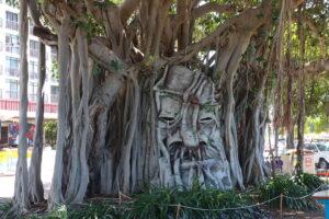 Strand Ephemera 2021 - tree