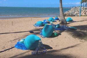 Strand Ephemera 2021 - bluebottles