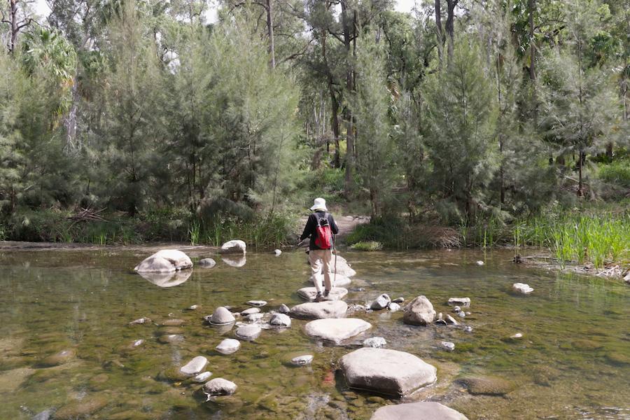 carnarvon gorge creek crossing