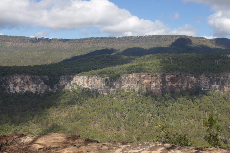 carnarvon gorge landscape
